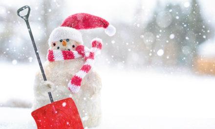 Best Snow Shovels Reviews 2020