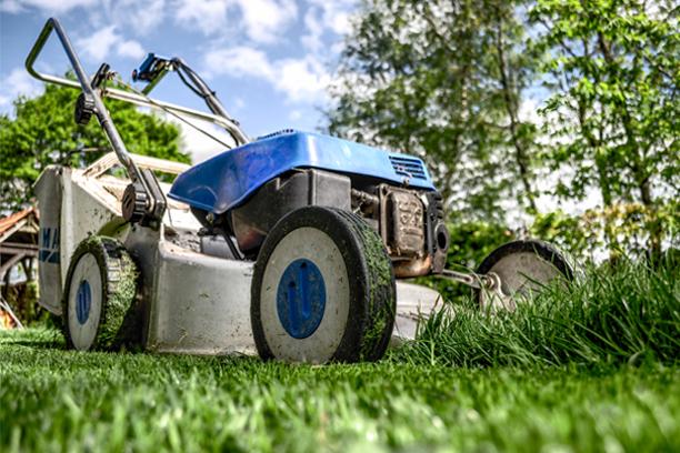 Best Self-Propelled Lawn Mowers Reviews 2020